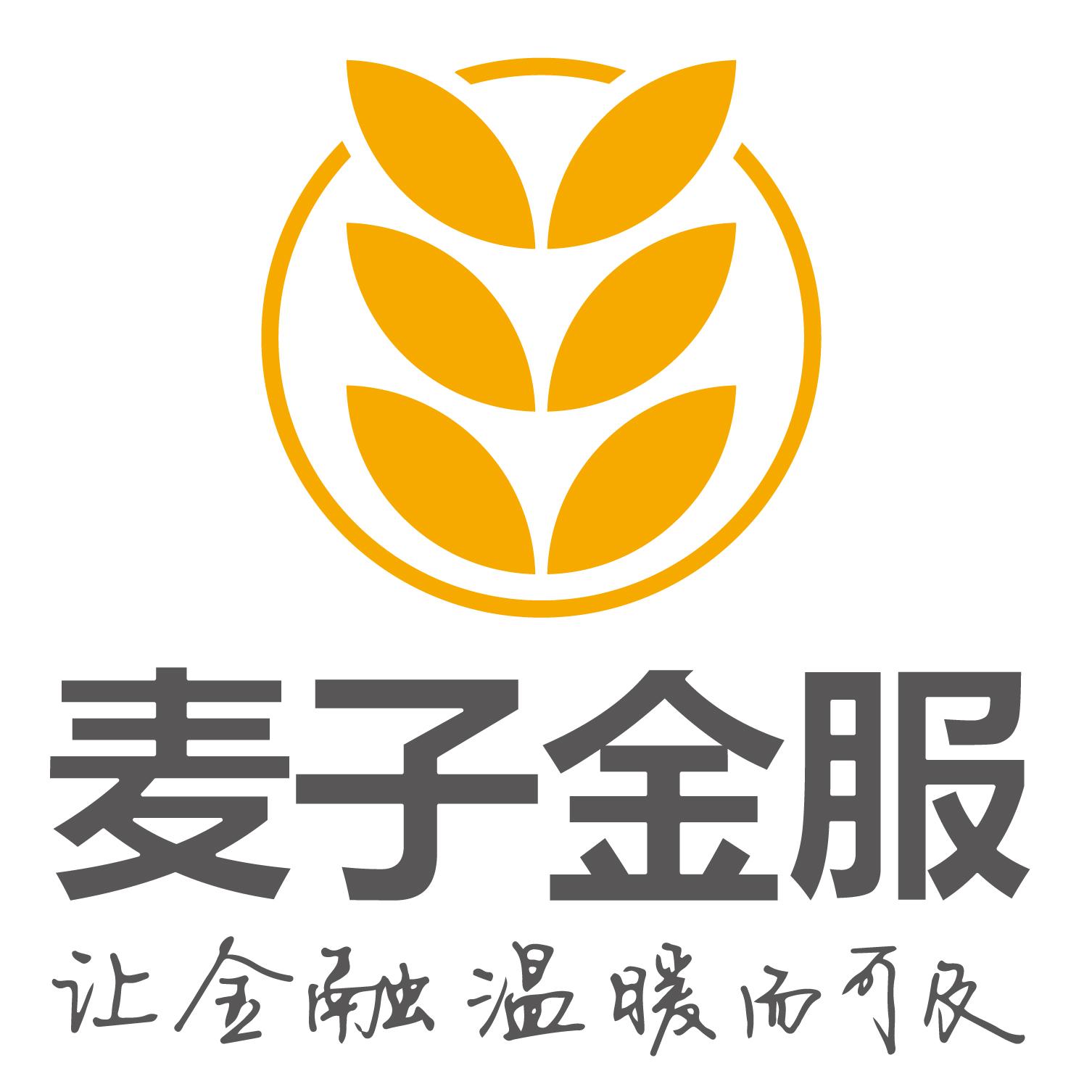 上海麦子资产管理有限公司
