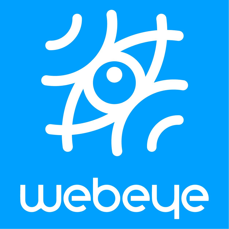 WebEye南京网眼信息技术有限公司